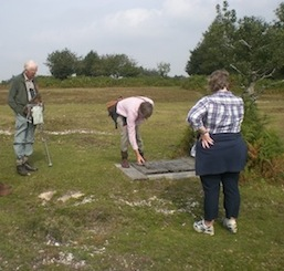Members visit the New Forest